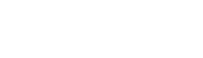 Nav academy logo